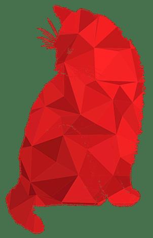 catinred gato rojo diseño zaragoza